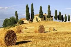 Прованс в Италии